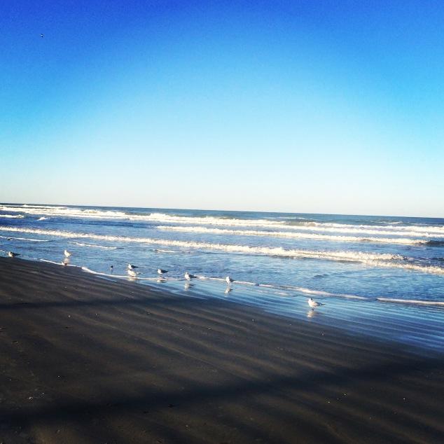 New Smyrna Beach | Sarah Caudill